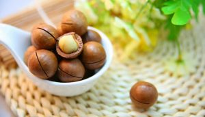 macadamia nuts,do not feed your dogs