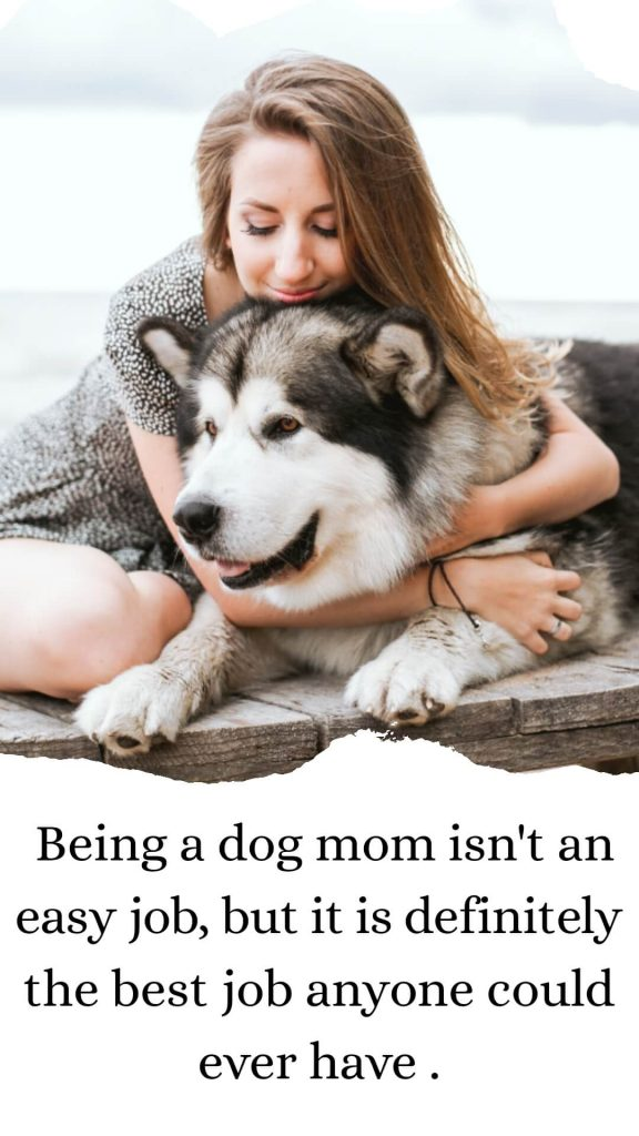 Being a dog mom isn't an easy job, but it is definitely the best job anyone could ever have.