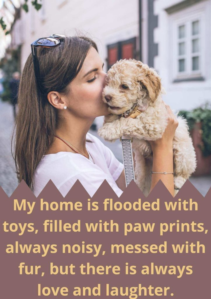 My home is flooded with toys, filled with paw prints, always noisy, messed with fur, but there is always love and laughter.